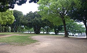 駕与丁公園 芝生広場