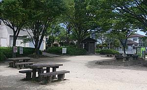 室見川河畔公園 野生の広場